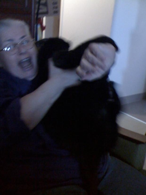 Freddy hates cuddling.